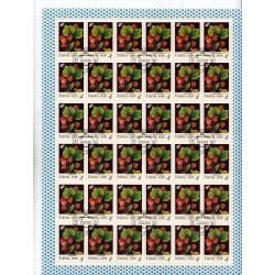 Russia - CCCP - Foglio Intero - Scott 5023 4K 1982- Flora Fiori