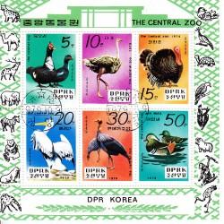 Korea - Scott A985-1864/69 05/10/1979 Foglietto Zoo Uccelli usato