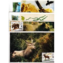 FDC ITALIA 1991 Cartolina Roma Unif. 1996/9 Salvaguardia della natura 4/c