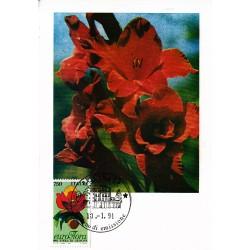 FDC ITALIA 1991 Cartolina Roma Unif. 1970 Euroflora 91 A/PA