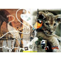 Folder Italia 2003 Zoosafari Di Fasano - valore facciale € 7.00